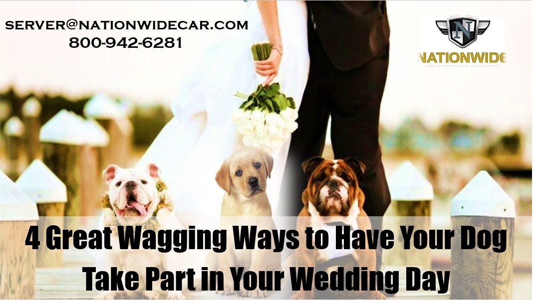 4 Great Wagging Ways to Have Your Dog Take Part in Your Wedding Day