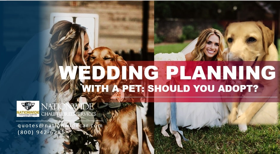 Wedding Planning with a Pet: Should You Adopt?