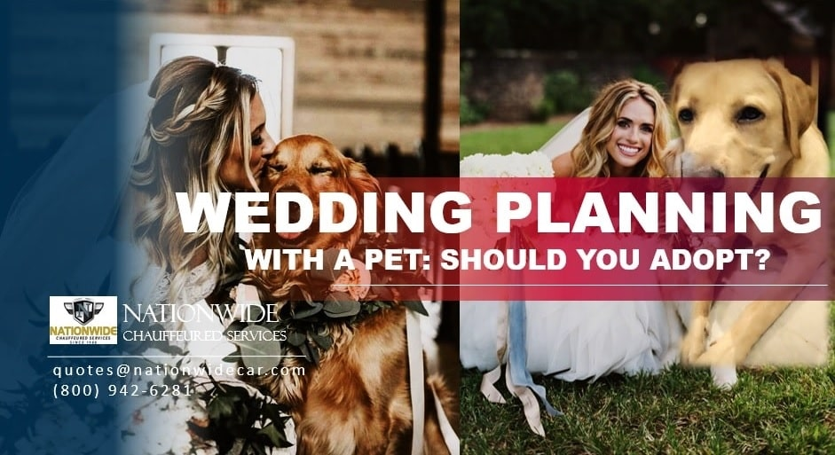 Wedding Planning with a Pet